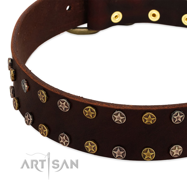 Fancy walking full grain leather dog collar with amazing decorations
