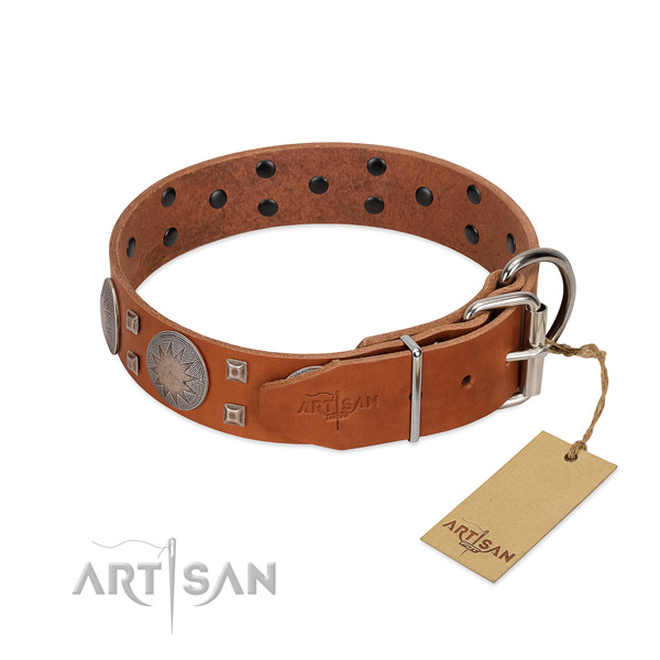 Unique full grain natural leather dog collar for stylish walking your dog