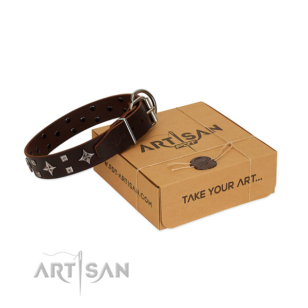 Unusual genuine leather collar for your dog walking in style
