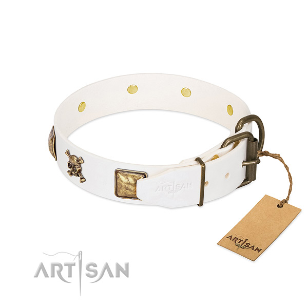 Incredible full grain natural leather dog collar with reliable embellishments