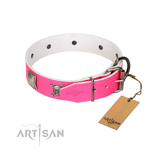 Inimitable full grain genuine leather dog collar with reliable studs