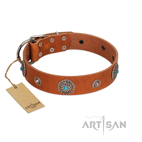 Fine quality genuine leather dog collar with rust resistant D-ring