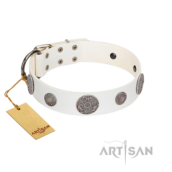 Adorned full grain natural leather collar for your attractive canine