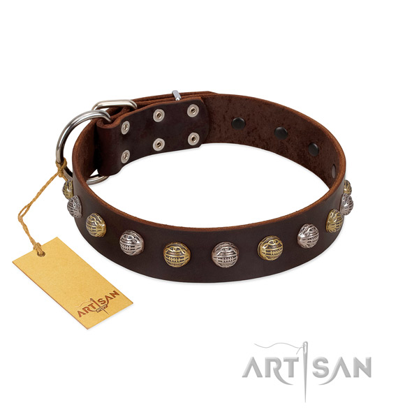 Rust-proof D-ring on full grain natural leather dog collar for stylish walking your pet