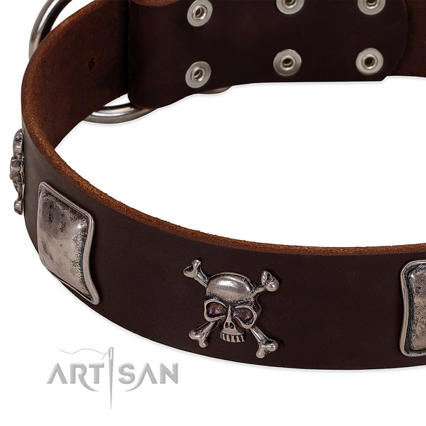 Durable D-ring on full grain genuine leather dog collar