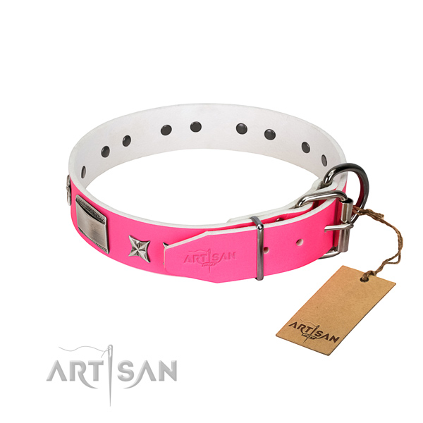Fashionable collar of leather for your stylish doggie