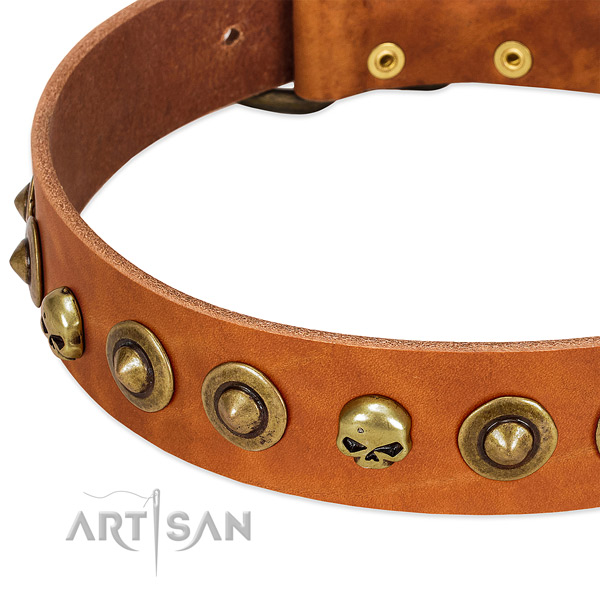 Unique adornments on full grain natural leather collar for your canine