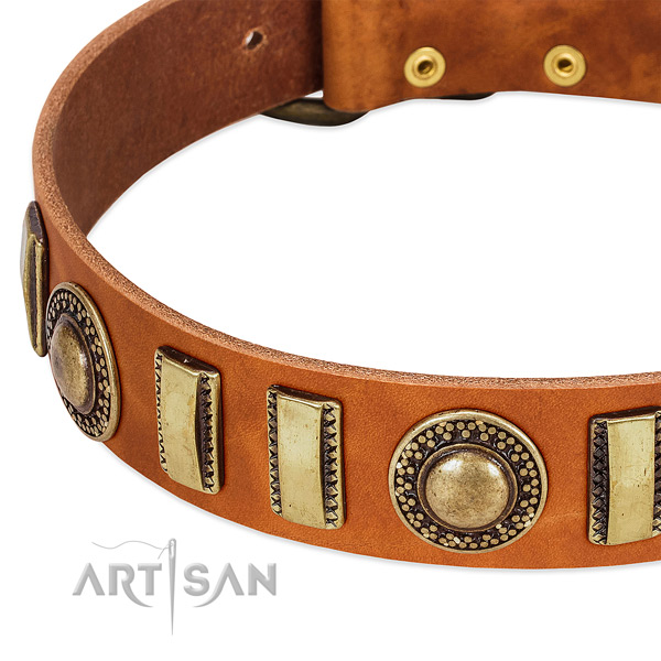 Reliable full grain natural leather dog collar with corrosion resistant fittings