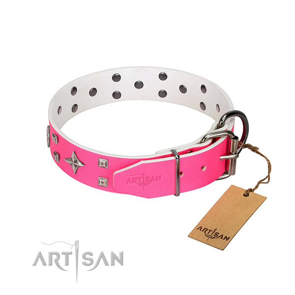 Natural leather dog collar with significant adornments