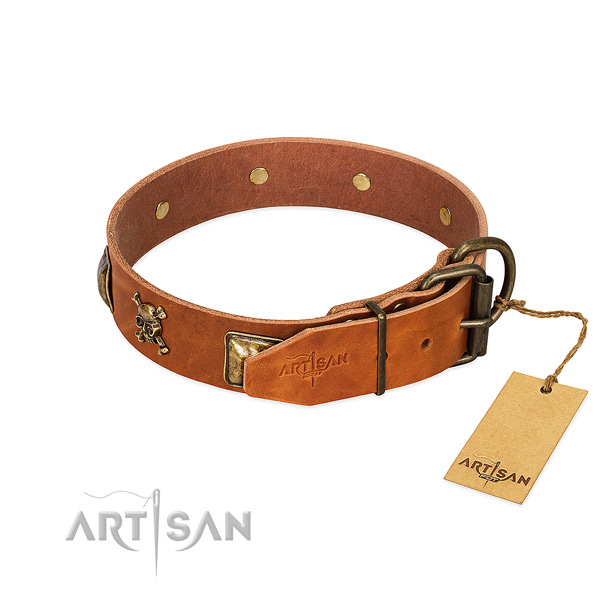 Extraordinary full grain leather dog collar with rust resistant adornments