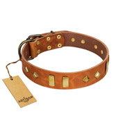 """Woofy Dawn"" FDT Artisan Tan Leather Mastiff Collar with Plates and Rhombs"