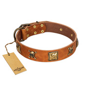 """Knights Templar"" FDT Artisan Tan Leather Mastiff Collar with Skulls and Crossbones Combined with Squares"