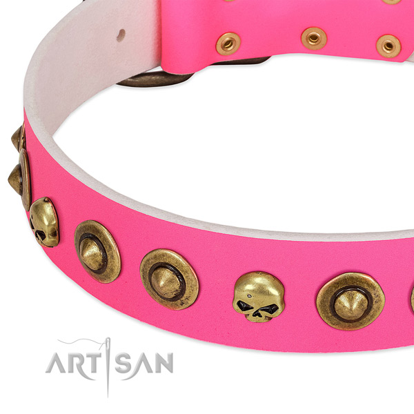 Incredible decorations on leather collar for your dog
