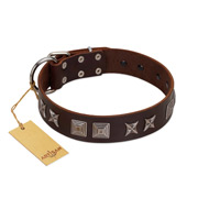 """Needle Stories"" Modern FDT Artisan Brown Leather Mastiff Collar with Square Engraved Plates and Four-Point Stars"