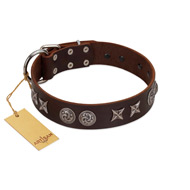 """Silver Sunset"" Designer Handmade FDT Artisan Brown Leather Mastiff Collar"