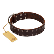 """Star Party"" Handmade FDT Artisan Brown Leather Mastiff Collar with Silver-Like Studs"