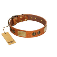 """Bronze Century"" FDT Artisan Tan Leather Mastiff Collar with Plates and Brooches with Cool Ornament"