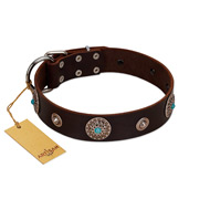 """Magic Stones"" FDT Artisan Brown Leather Mastiff Collar with Chrome Plated Brooches and Studs"