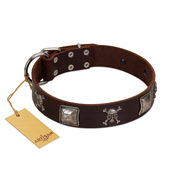"""Nut-Brown Finery"" Embellished FDT Artisan Brown Leather Mastiff Collar with Chrome Plated Crossbones and Plates"