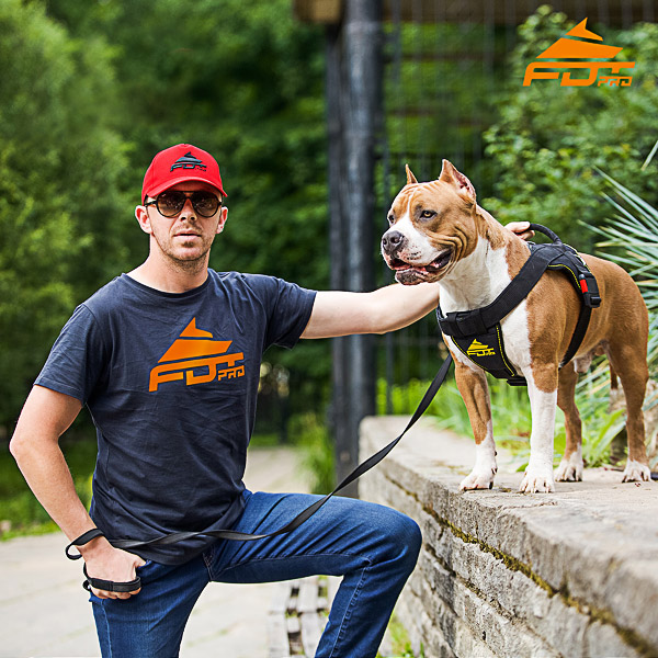 Men T-shirt of Best Quality Cotton with Orange Logo for Dog Trainers