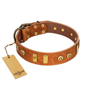 """Egyptian Script"" FDT Artisan Tan Leather Mastiff Collar with Plates and Small Studs"