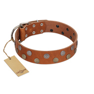 """Ancient Symbol"" Trendy FDT Artisan Tan Leather Mastiff Collar with Silver- and Gold-Like Studs"