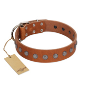 """Little Floret"" Fashionable FDT Artisan Tan Leather Mastiff Collar with Silver-Like Adornments"