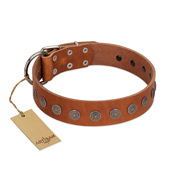 """Lucky Star"" Handmade FDT Artisan Designer Tan Leather Mastiff Collar with Round Plates"
