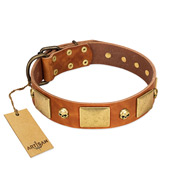 """Mutt The Daredevil"" FDT Artisan Tan Leather Mastiff Collar with Old Bronze-like Skulls and Plates"