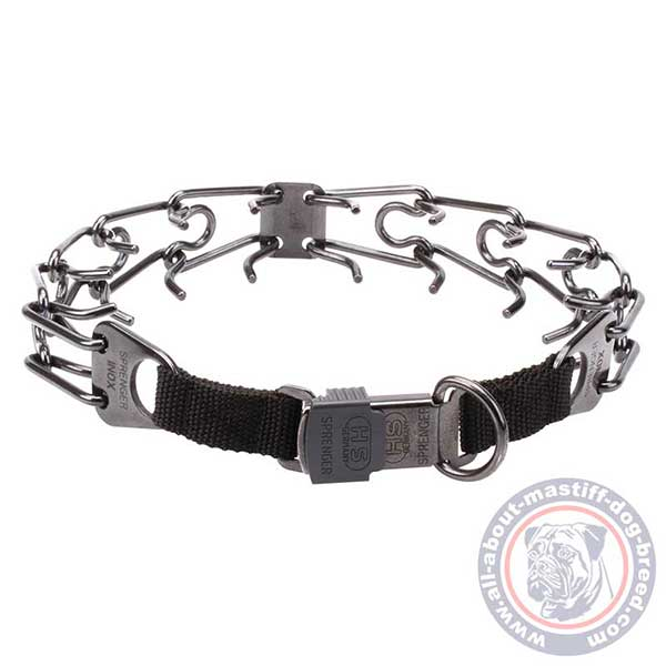 Obedience training pinch dog collar