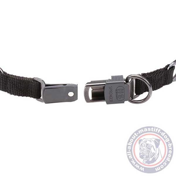 Quick to fasten pinch dog collar