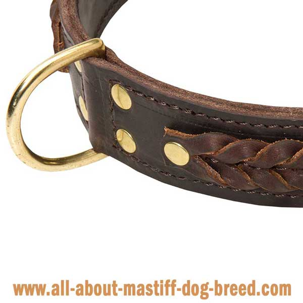 Wide Leather Cane Corso Mastiff Collar