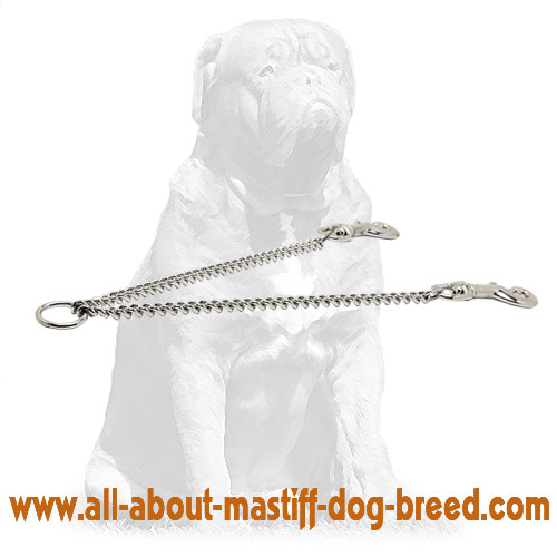 Steel chrome plated dog walking leash