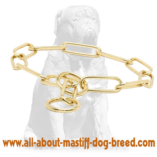 Comfortable metal dog collar for walking and training