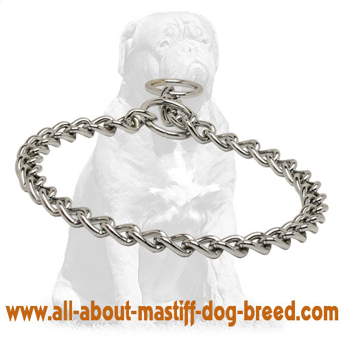 Durable non-rusting metal choke dog collar