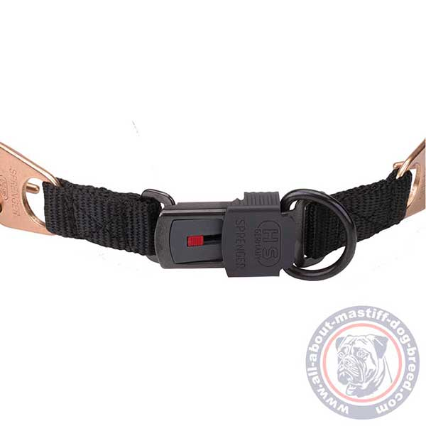 Reliable pinch dog collar with buckle