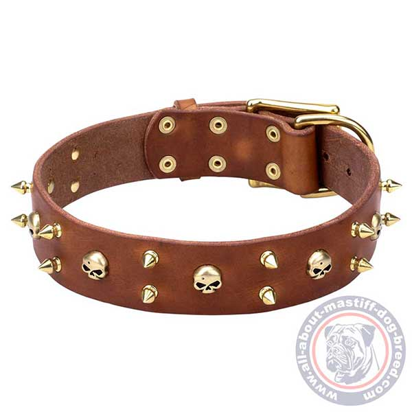 Brown leather dog collar for walking and training