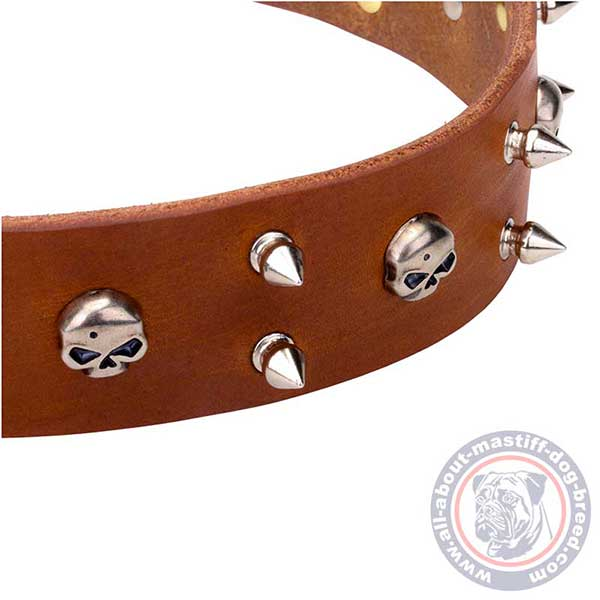 Brown leather dog collar with riveted details