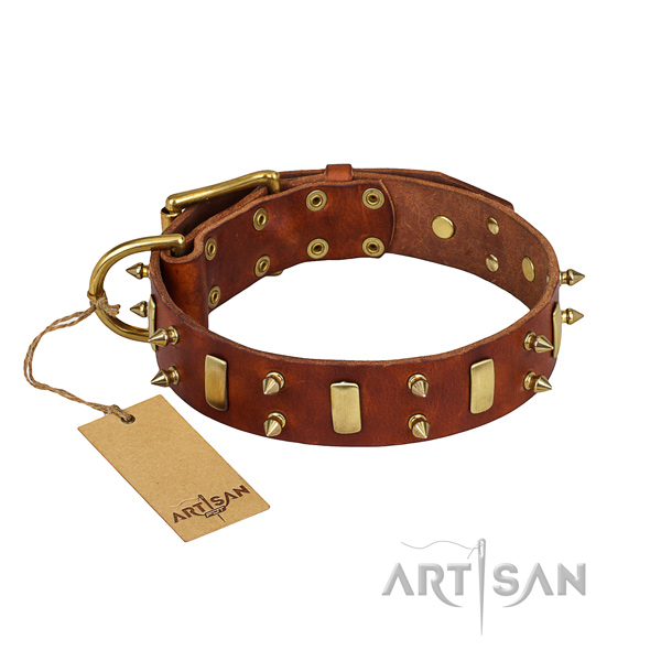 Durable leather dog collar with sturdy details