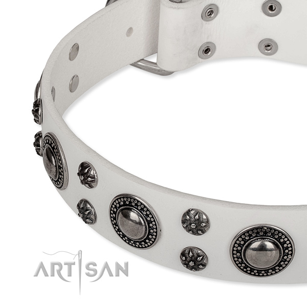 Easy to use leather dog collar with resistant to tear and wear chrome plated buckle and D-ring