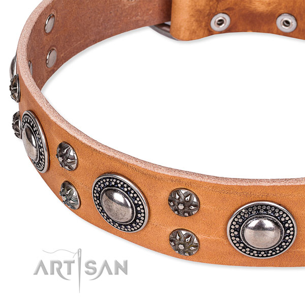 Adjustable leather dog collar with almost unbreakable chrome plated hardware