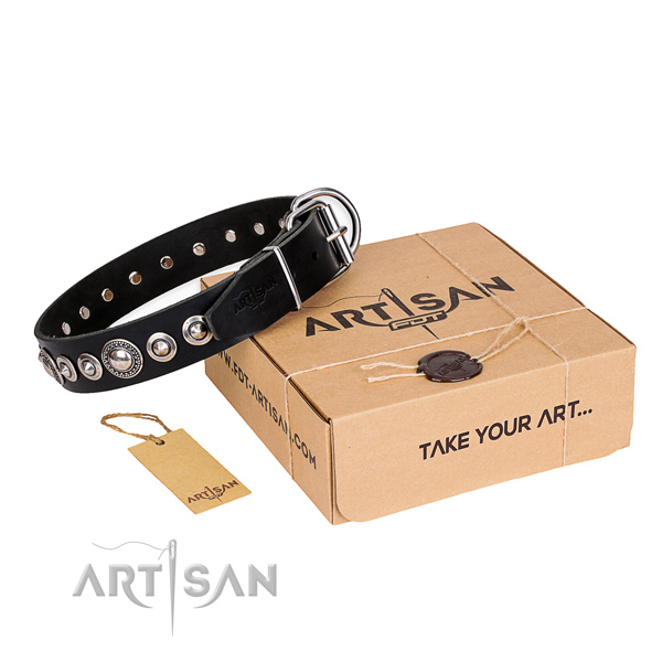 Impressive genuine leather dog collar for walking