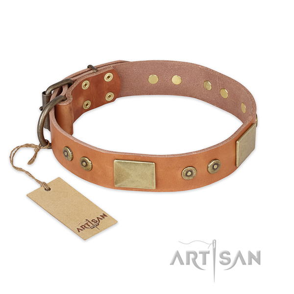 Stunning design studs on full grain leather dog collar