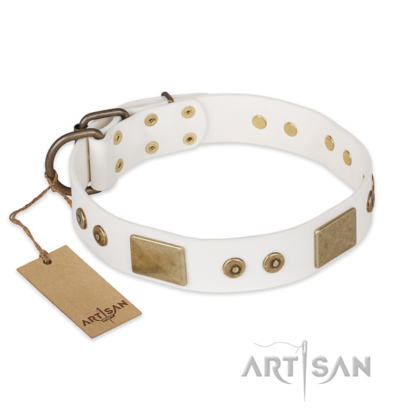 Incredible design embellishments on full grain leather dog collar