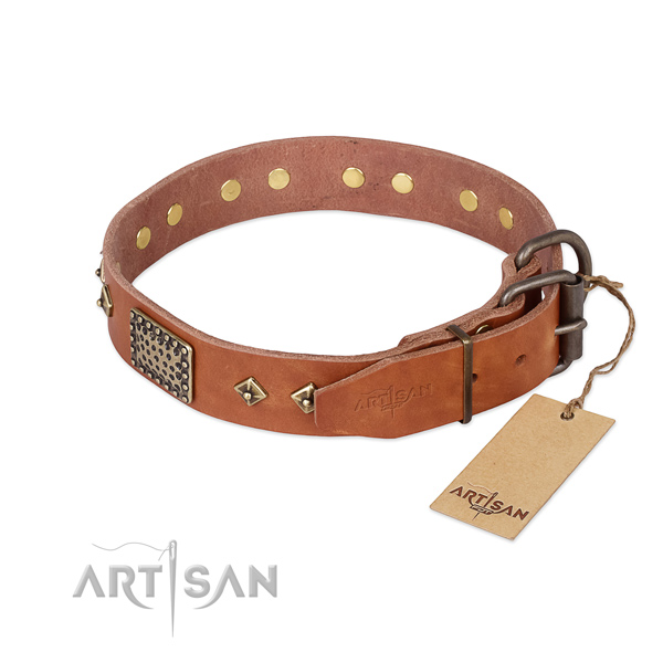Walking full grain natural leather collar with decorations for your doggie