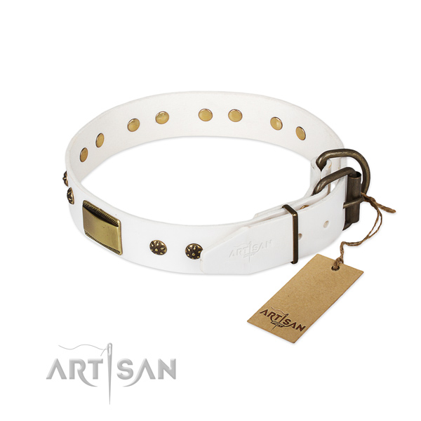 Everyday use full grain natural leather collar with decorations for your dog