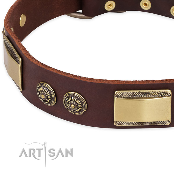 Daily walking full grain leather collar with corrosion proof buckle and D-ring