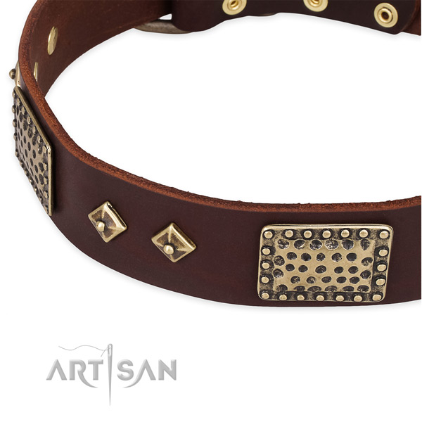 Everyday walking full grain natural leather collar with rust-proof buckle and D-ring
