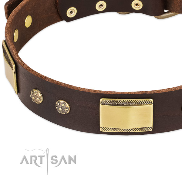 Handy use full grain leather collar with reliable buckle and D-ring