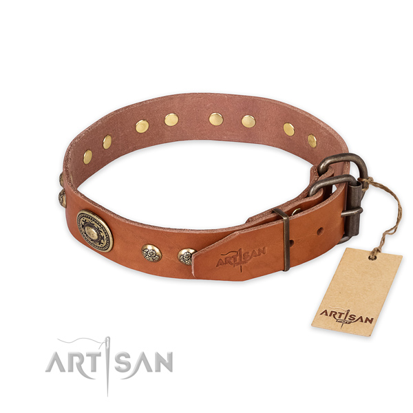 Daily walking natural genuine leather collar with embellishments for your four-legged friend